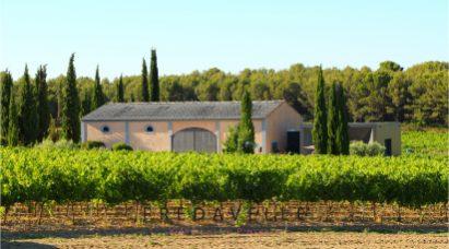 adresse domaine fredavelle visite dégustation vins provence vignoble accueil groupe aix-en-provence événementiel bouches du rhone oenotourisme sud de la france