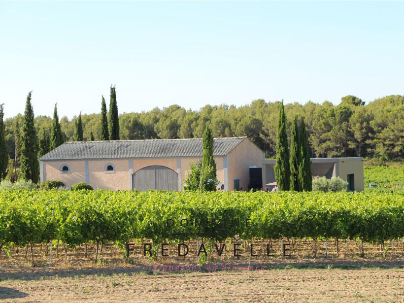 domaine fredavelle espace dégustation vin vue sur les vignes route des vins architecture tourisme aix marseille provence vignoble