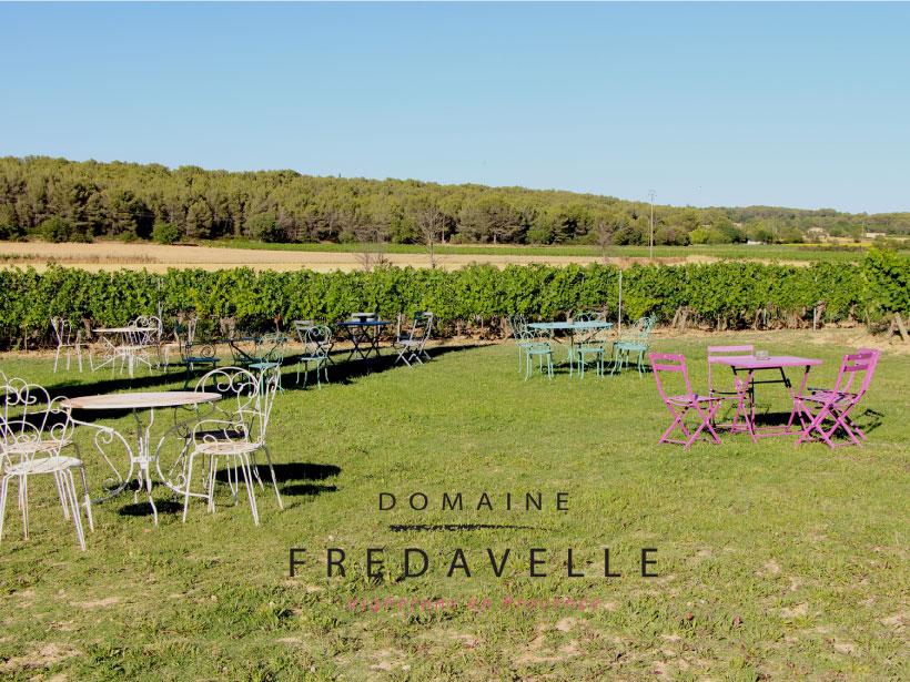 domaine fredavelle accueil public animation dégustation thème vins dans les vignes provence paysage campagne aix-en-provence tourisme privatisation
